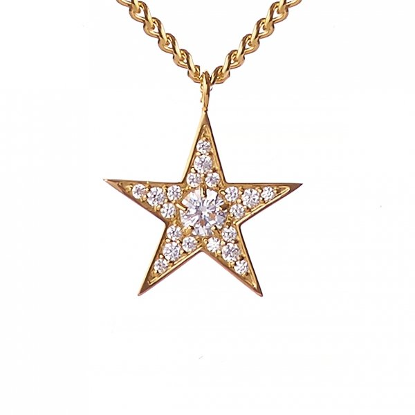 <img class='new_mark_img1' src='//img.shop-pro.jp/img/new/icons8.gif' style='border:none;display:inline;margin:0px;padding:0px;width:auto;' />Star Struck Necklace<br>(ゴールド)