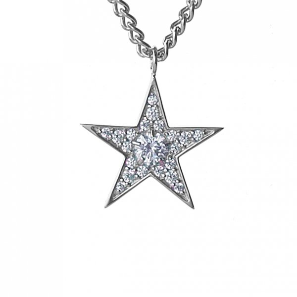 <img class='new_mark_img1' src='//img.shop-pro.jp/img/new/icons8.gif' style='border:none;display:inline;margin:0px;padding:0px;width:auto;' />Star Struck Necklace<br>(シルバー)