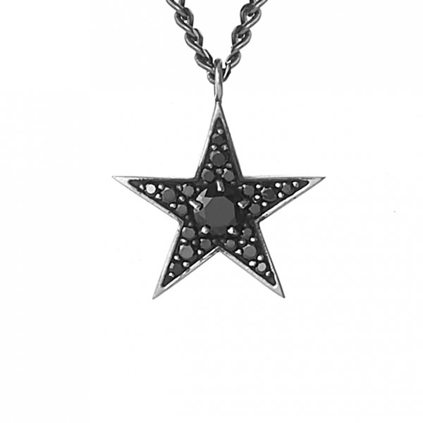 <img class='new_mark_img1' src='//img.shop-pro.jp/img/new/icons8.gif' style='border:none;display:inline;margin:0px;padding:0px;width:auto;' />Star Struck Necklace