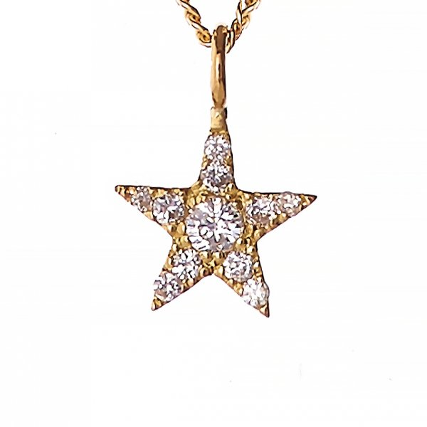 <img class='new_mark_img1' src='//img.shop-pro.jp/img/new/icons8.gif' style='border:none;display:inline;margin:0px;padding:0px;width:auto;' />Lucky Star Petite Necklace