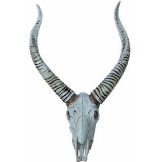 アンテロープスカルヘッド ウォールフィギュア Antelope Head