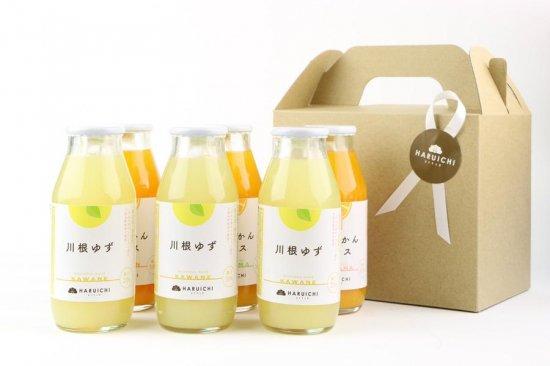 浜松みかんジュース青島×1・片山×1・南柑×1・川根ゆず×3