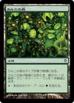 カルニの庭/Khalni Garden(WWK)【日本語】