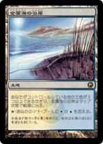 金属海の沿岸/Seachrome Coast(SOM)【日本語】