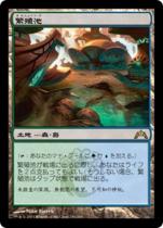 繁殖池/Breeding Pool(GTC)【日本語】
