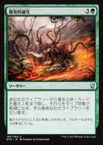 爆発的植生/Explosive Vegetation(DTK)【日本語】