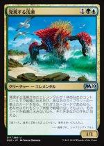発現する浅瀬/Risen Reef(M20)【日本語FOIL】