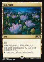 睡蓮の原野/Lotus Field(M20)【日本語FOIL】