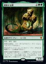 探索する獣/Questing Beast(ELD)【日本語】