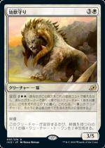 幼獣守り/Cubwarden(IKO)【日本語FOIL】