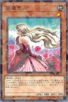 薔薇恋人【パラレル】DBSS-JP039