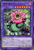 捕食植物キメラフレシア【レア】LVP3-JP072