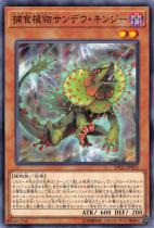 捕食植物サンデウ・キンジー【ノーマル】DP22-JP051