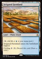 灌漑農地/Irrigated Farmland(AKH)【英語】