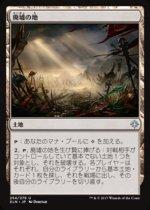 廃墟の地/Field of Ruin(XLN)【日本語】