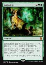 自然の秩序/Natural Order(EMA)【日本語】