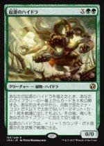 起源のハイドラ/Genesis Hydra(IMA)【日本語】
