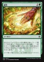 耕作/Cultivate(A25)【日本語】