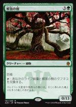 解放の樹/Tree of Redemption(A25)【日本語】