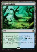 溢れかえる果樹園/Flooded Grove(A25)【日本語】