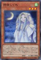 朔夜しぐれ【スーパー】ETCO-JP036