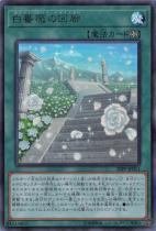 白薔薇の回廊【ウルトラ】20PP-JP011