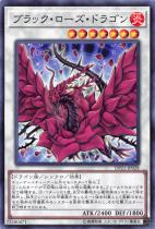 ブラック・ローズ・ドラゴン【ノーマル】DP21-JP028