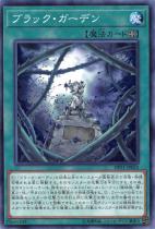ブラック・ガーデン【ノーマル】DP21-JP032