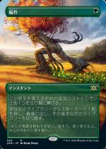 輪作/Crop Rotation(2XM)【日本語FOIL】(拡張アート)