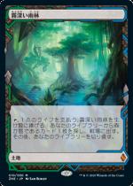 霧深い雨林/Misty Rainforest(ZNR)(EXP)【日本語FOIL】