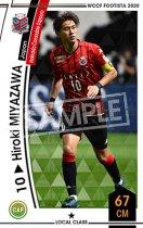 ヒロキ・ミヤザワ《F20-7 36》
