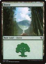 森/Forest(JMP)【英語】