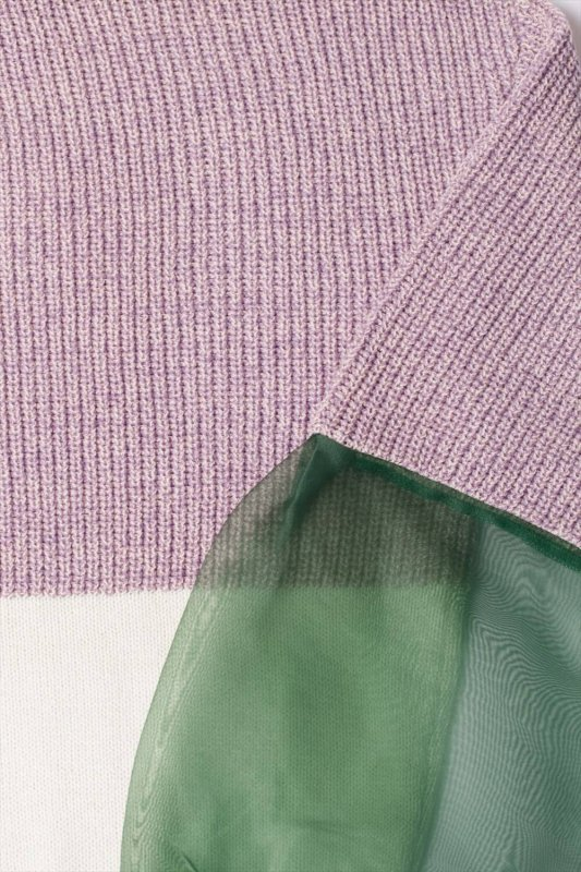 THE SEE-THROUGH SLEEVE BICOLOR KNIT(PINK GREEN)