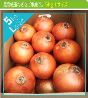追熟甘玉ねぎ L 5kg | 送料無料 | 淡路玉葱
