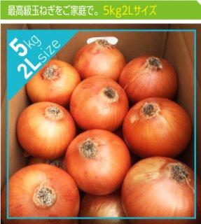 追熟甘玉ねぎ 2L 5kg | 送料無料 | 淡路玉葱