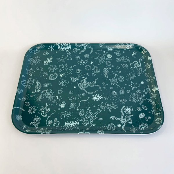 Classic Trays / Sea Things / Large<img class='new_mark_img2' src='https://img.shop-pro.jp/img/new/icons5.gif' style='border:none;display:inline;margin:0px;padding:0px;width:auto;' />