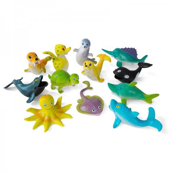 Cartoon Marine Animal