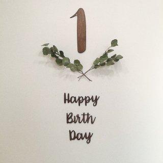 【バースデーセットHBD+数字】お誕生日 フォト 飾り