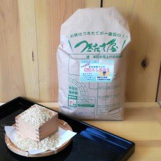 特別栽培米 【29年産】曽我直樹さん 新潟県産コシヒカリ 5kg