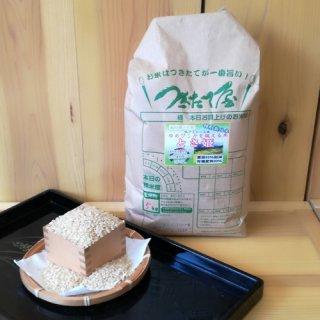 特別栽培米【29年産】 土佐れいほく 高知県産 とさ姫 5kg