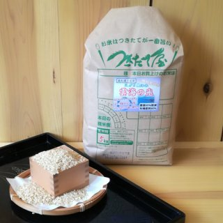 特別栽培米【29年産】土佐れいほく 雲海の光 5kg