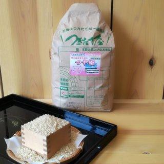 特別栽培米【29年産】島根県産 出雲の国・つや姫 5kg