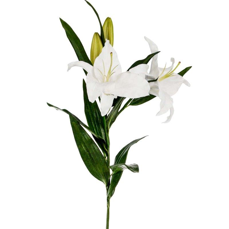 カサブランカ 単品花材
