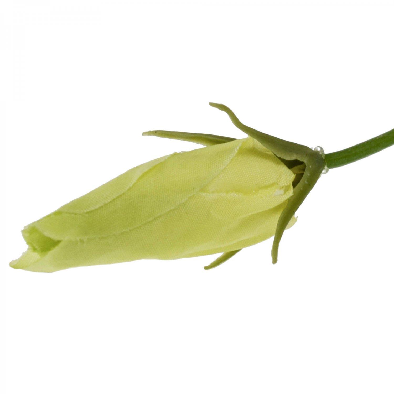 リシアンサス ホワイト 単品花材