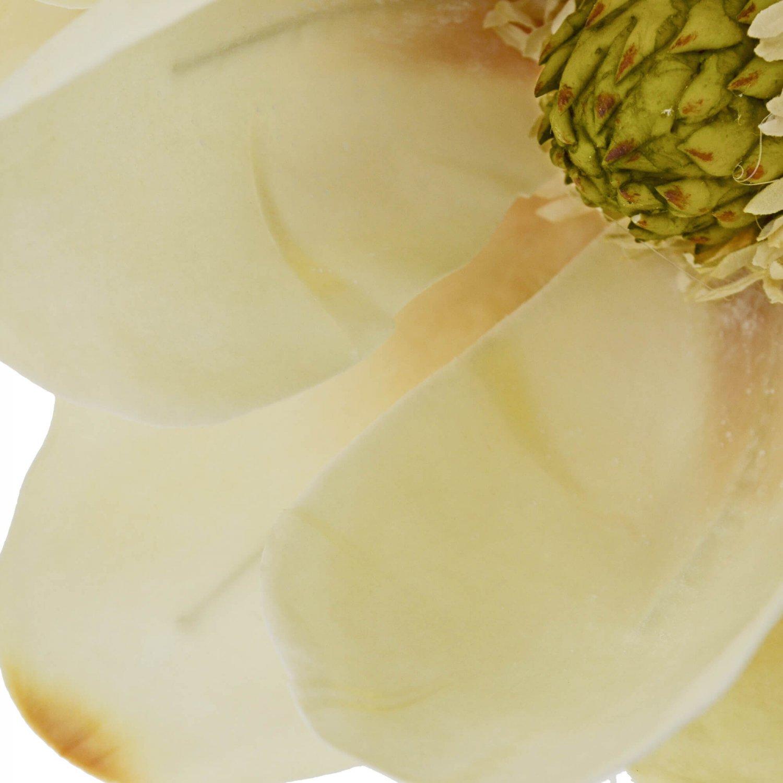 マグノリア 単品花材