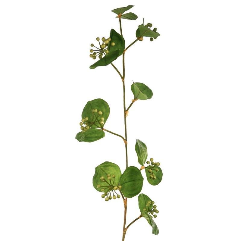 サンキライ 単品花材