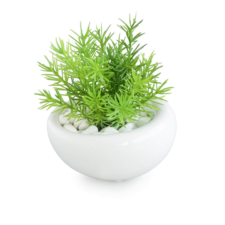ミリオン 白陶器S