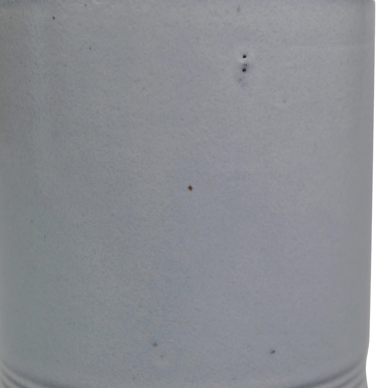 アジアンタム 皿付グレープランターH13