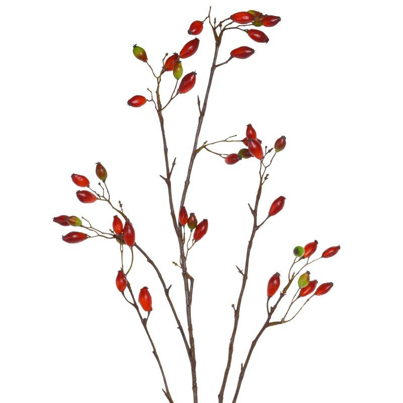 ローズヒップ 単品花材