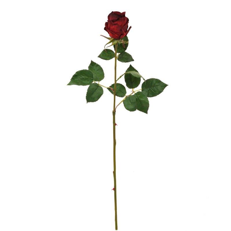 赤バラ 単品花材 H63